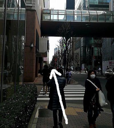 東京中央美容外科 TCB 銀座院 アクセス 行き方